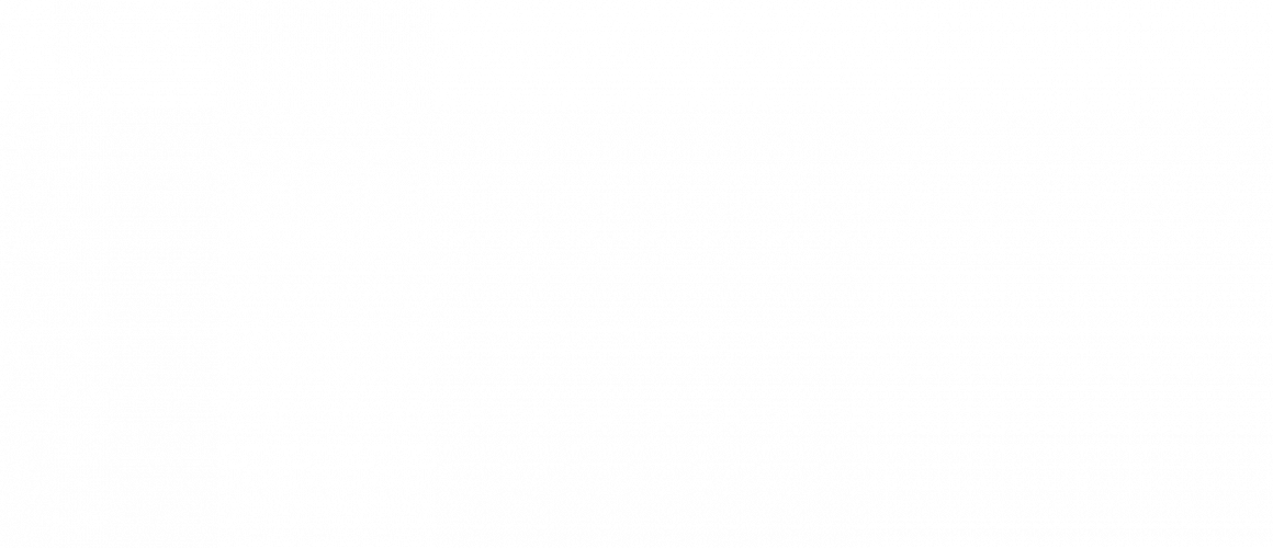 Insektenschutz_01